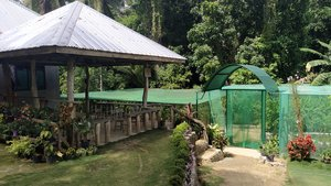 Butterfly Sanctuary, Siquijor